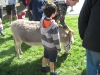 brooklyn-kids-market-28-september-2013-050